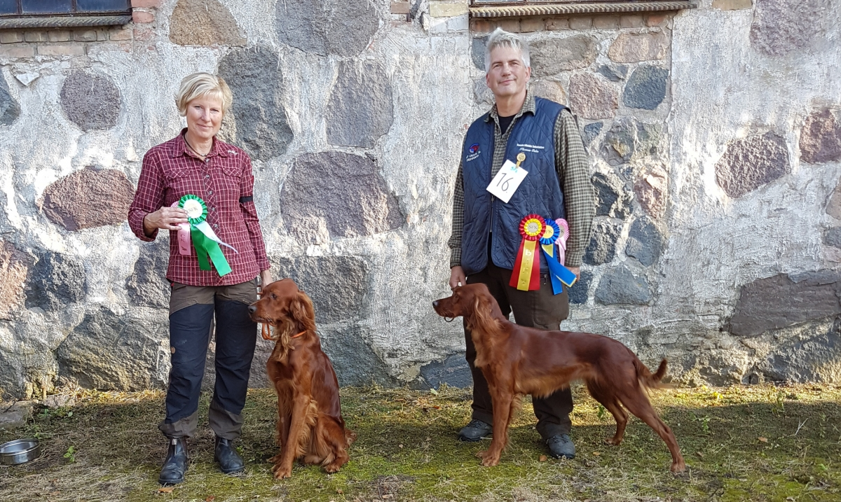 Working Gundogs Blomma & Kaselyckans Favour med Lisa & Thomas Odén